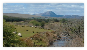 View to Croagh Patrick from the Aille River near Westport, Co. Mayo, Ireland